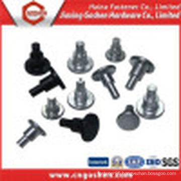 Steel Solid Step Rivet/ Rivet Nut / Blind Rivet/ Hollow Rivet Nut
