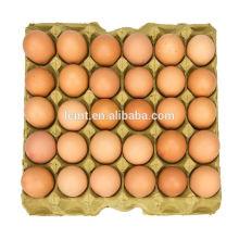 Fournisseurs de carton d'oeufs de HighPoint des plateaux d'oeufs à vendre