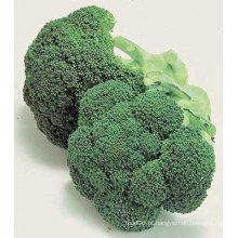 Brócolis chineses