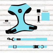 Dog Leash and Collar Set Safe Comfy Bright
