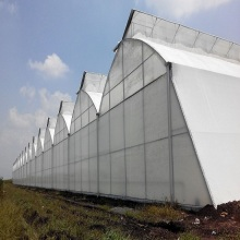 Hot sale for Pc Board Greenhouse Tunnel Plastic Film Greenhouse For Growing Vegetables export to Afghanistan Exporter