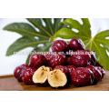 Jujube chinese red dates organic food