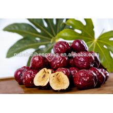 Jujube chinesische rote Datteln Bio-Lebensmittel