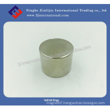 Disc Magnet Neodymium Magnets for Motor/ Customized Magnet