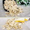 Shine sementes de abóbora pele nova safra 2017 topo grau