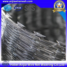 Electro Galvanized Iron Barbed Razor Wire Fence