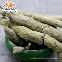 Most Popular Natural 60mesh spongilla sponge spicules powder for man