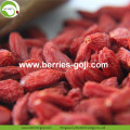 Beli Natural Nutrition Anti Cancer Lycium Berry