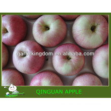Vender China qinguan apple Brother Reino