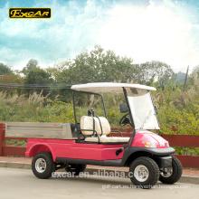Carro de buggy personalizado de 2 plazas para carrito de golf de carga