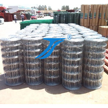 Hot Dipped Galvanized Farm Field Fence/Grassland Fence
