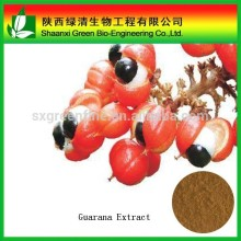 100% Natural Guarana Extract, Guarana Extract Powder, Guarana P.E.
