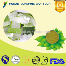 Wholesale Low Price Best Aloe Vera Juice Extract Powder for Skin Whitening