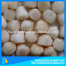 IQF Frozen bay scallops adductor meat for sale