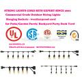 Luces de cuerda al aire libre iluminadas con iluminación comercial de filamentos de Edison - Cuerdas de 48 pies para trabajos pesados 18 zócalos 21 bombillas incandescentes (3 spa