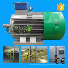 Generador de 100kw Pmg Low Rpm con imán permanente