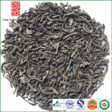 EXTRACT CHINA GREEN TEA 41022