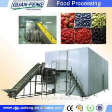 iqf freezer/ frozen food machine manufacturers
