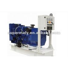 Hochwertiger elektrischer Generator