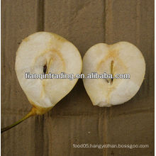 china wholesale ya pear