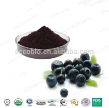 Natural Acai Berry Extract 10 to 1 from GMP supplier