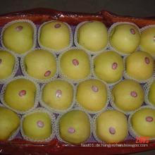 2015 New Crop Exporting Standerd Goldener Apfel