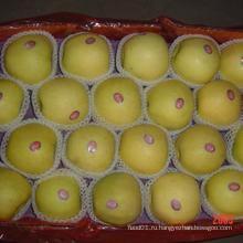 2015 Новый экспорт зерновых Standerd Golden Apple