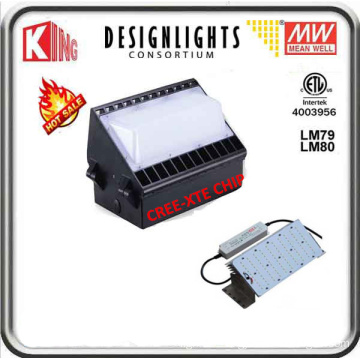 100W LED Wall Pack LED Wall Pack Light Wall Pack LED Meanwell Power and CREE Xte LED Chip CE ETL Dlc