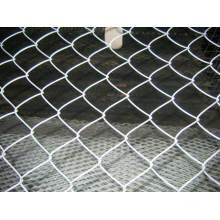 Cadena de acoplamiento de malla / malla de alambre de diamante / cadena cerca de lazo