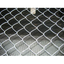 Chain Link Mesh/Diamond Wire Mesh/Chain Link Fence