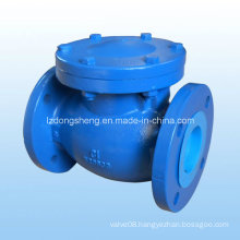 DIN Cast Iron Swing Check Valve, Pn16