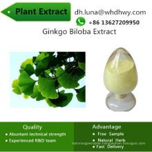 Biloba CAS: 90045-36-6 Increase The Vasodilation Ginkgo Biloba Extract