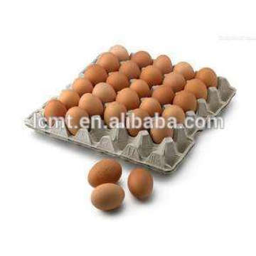 custom-made high-top chicken egg carton for sale