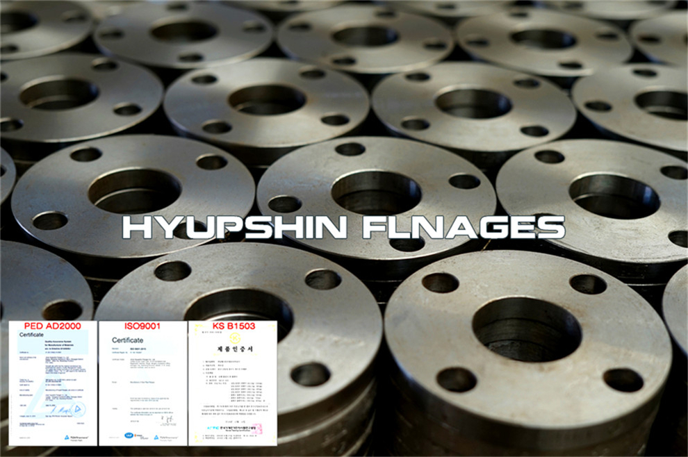 Hyupshin Flanges En1092 1 01a Flanges Plate