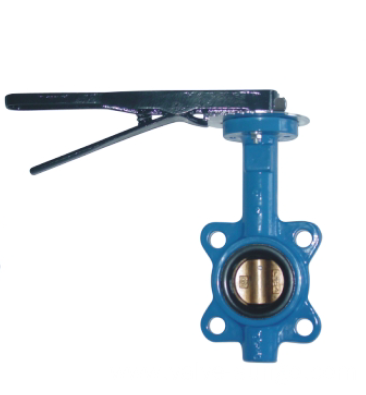 Soft seated butterfly valve 2 Inch