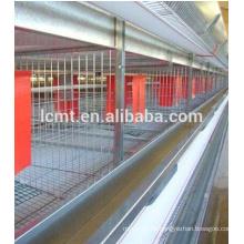 Sistema automático de alimentación de pollos de engorde Broiler Poultry Farm para gallineros de pollo