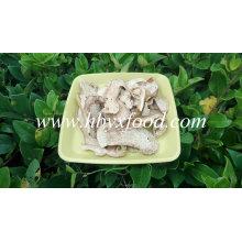 Seta de Porcini comestible seca deshidratada