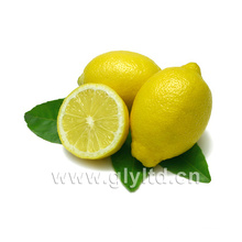 Chinesischer Lieferant für frische Zitrone / Limette