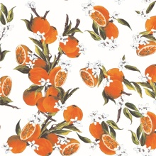 Printed Cotton Fabric for Dress and Wind Coat (DSC-523)
