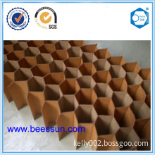 Paper Honeycomb Core Used for Clean Room