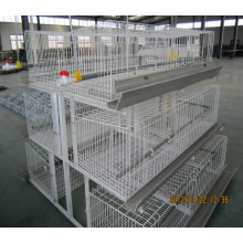 Automactic poultry farm for layer chicken cage
