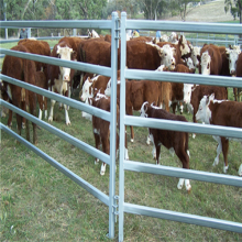 Good quality horse fence post spacing