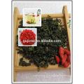 Сушеные Годжи чай,Мушмула листья,Лайчи фолиум Барбари фолиа