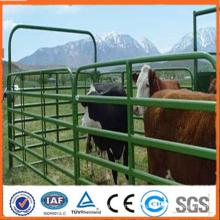 Anping factory Portable utilise des panneaux de chevaux en métal de couleur verte de 1,6 m