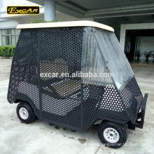 Close 2 seater electric golf cart ball pick up cart electric buggy car