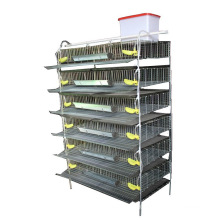commercial battery quail brooder cage
