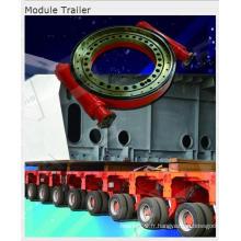 Entraînements de pivotement utilisés pour la remorque de module (M14 pouces)
