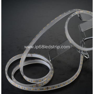 High Quality Industrial Factory for 5050 Led Strip All In One SMD5050 60leds 2700K Transparent led strip light export to Italy Manufacturers