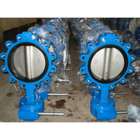 Concentric Lug Butterfly Valve
