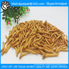 Pet Food Dried Mealworms High Quality Chicken Food